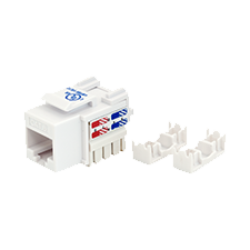 Wall Jack for CAT6 Infrastructure