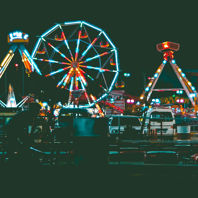 Surveillance systems for theme parks