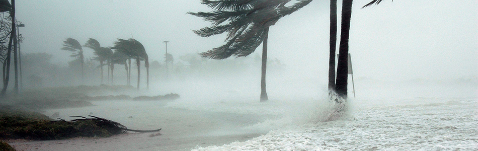 Hurricane Disaster Recovery with Optiview Mobile Solutions
