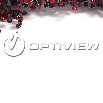 Optiview Thanksgiving 2019 Hours
